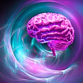 Brain research,conceptual artwork