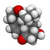 Prostaglandin E2 uterus stimulating drug