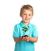 Boy holding seedling