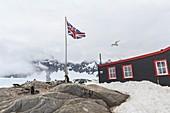 Port Lockroy Antarctic base