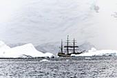 Sailing ship Europa in Antarctica