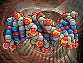 B DNA (Deoxyribonucleic acid),artwork