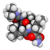 Boceprevir hepatitis C virus drug