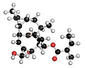 Ingenol mebutate actinic keratosis drug