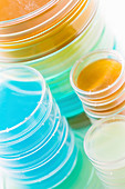 Petri dishes in a stack
