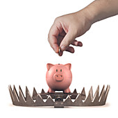 Animal trap with piggy bank,illustration
