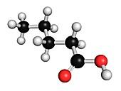 Valeric acid molecule
