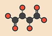 Tartaric acid molecule