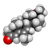 Megestrol molecule