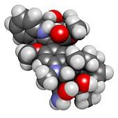 vindesine cancer chemotherapy drug