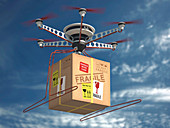 Parcel delivered by drone