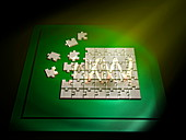 DNA jigsaw