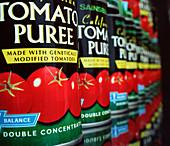 Genetically modified tomato puree