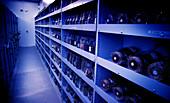 Seed bank cold storage vault
