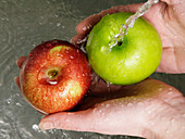 Person washing apples