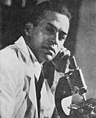 Ernest Just,Afro-American biologist