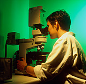 Female technician using a fluorescence microscope