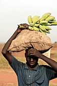 Carrying food at a refugee camp,Uganda