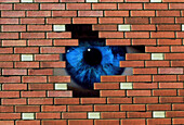 Abstract of eye looking through hole in brick wall