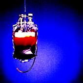 Suspended blood bag