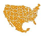 USA-Mexico diet,conceptual artwork