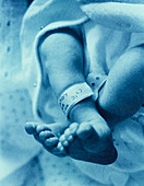 Newborn baby's tag