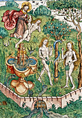 Illustration of Adam and Eve in the Garden of Eden