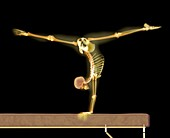 Gymnast balancing on a beam,X-ray artwork