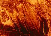 Wind-streaked debris on surface of Venus