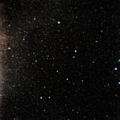 North celestial pole