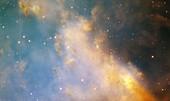 Dumbbell nebula detail