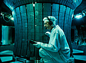 Fusion reactor maintenance