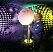 Technician checking an antenna