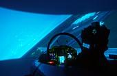 Typhoon fighter plane simulator