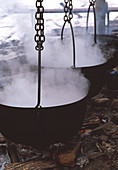 Maple syrup manufacture