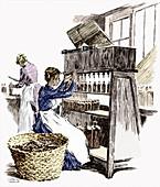 Bottling castor oil