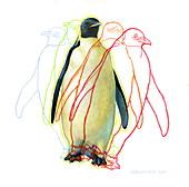 Penguin locomotion