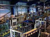 Glass factory, Merseyside, UK