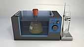 Fermentation experiment, animation