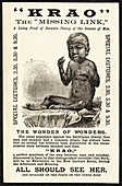 Hypertrichosis exhibit poster,1887