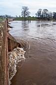 River Eden flooding