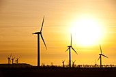 Wind farm,Cumbria,UK
