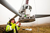 Three wind turbines being constructed