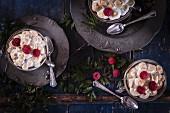 Queen Of Puddings (Brotpudding mit Kokosblütenzucker und Himbeeren, England)