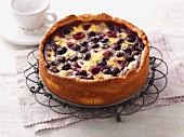 Juicy berry cake with an egg topping