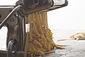 Fresh Pasta in a Pasta Maker
