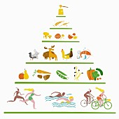 A Paleo nutrition pyramid