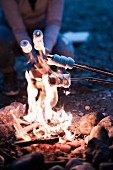 Marshmallows am Lagerfeuer grillen