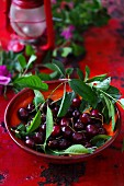 Fresh cherries with leaves on a red plate