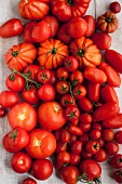 Verschiedene rote Tomaten auf Holztisch